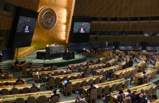 ONU asemblee generale veto roit