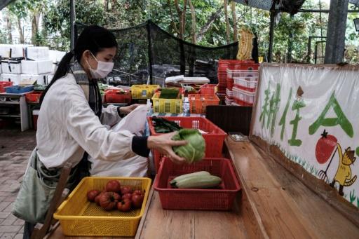 hong kong producteurs locaux coronavirus