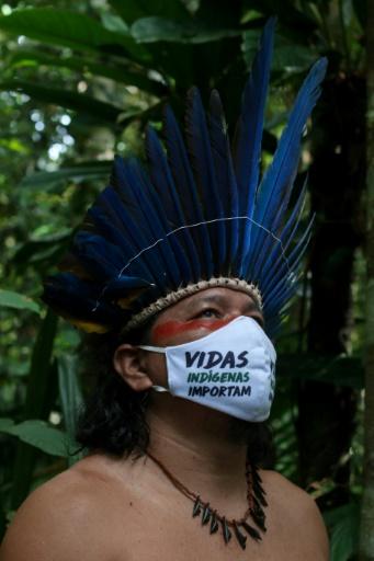 plantes contre le coronavirus amazonie