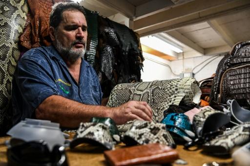 masques en peaux iguanes pythons
