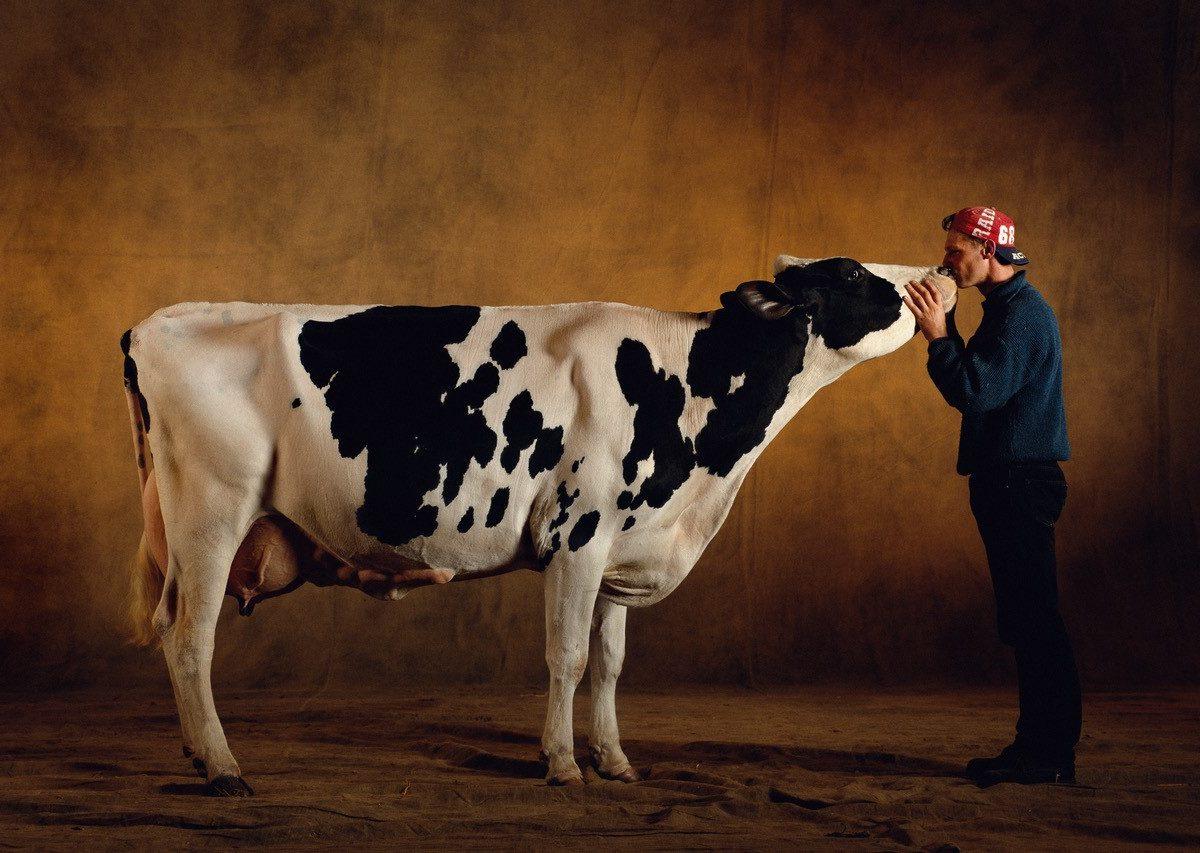 scandale prix du lait yann arthus bertrand