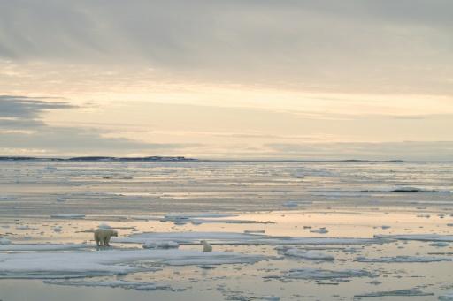 svalbard arctique reccord temperatures