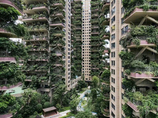 végétation Pékin