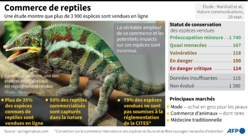 reptiles commerce
