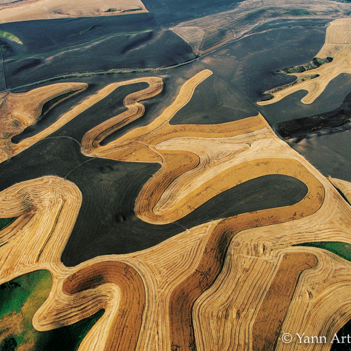 paysage agricole Etats-Unis