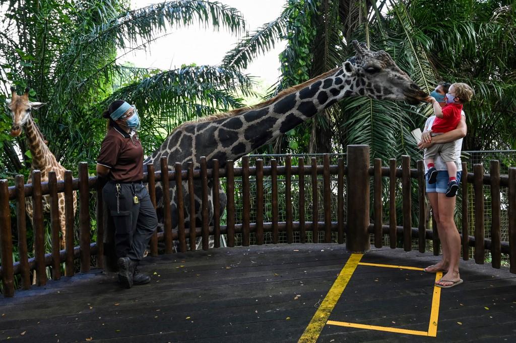 a quoi servent les zoo