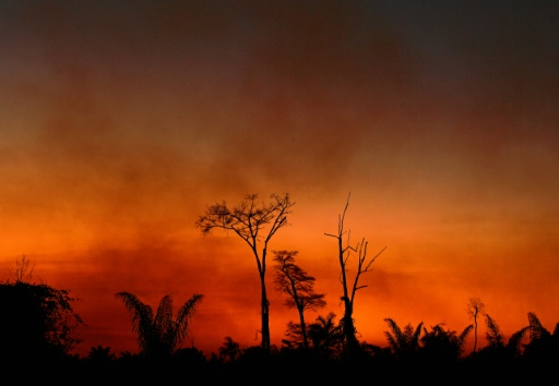 incendies Amazonie déforestation