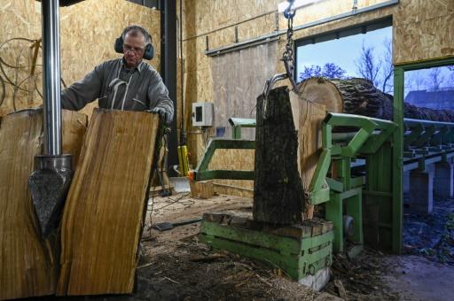 bois tonnellerie France