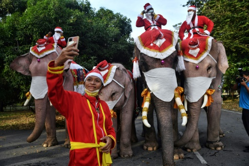 éléphants père-noël Thaïlande