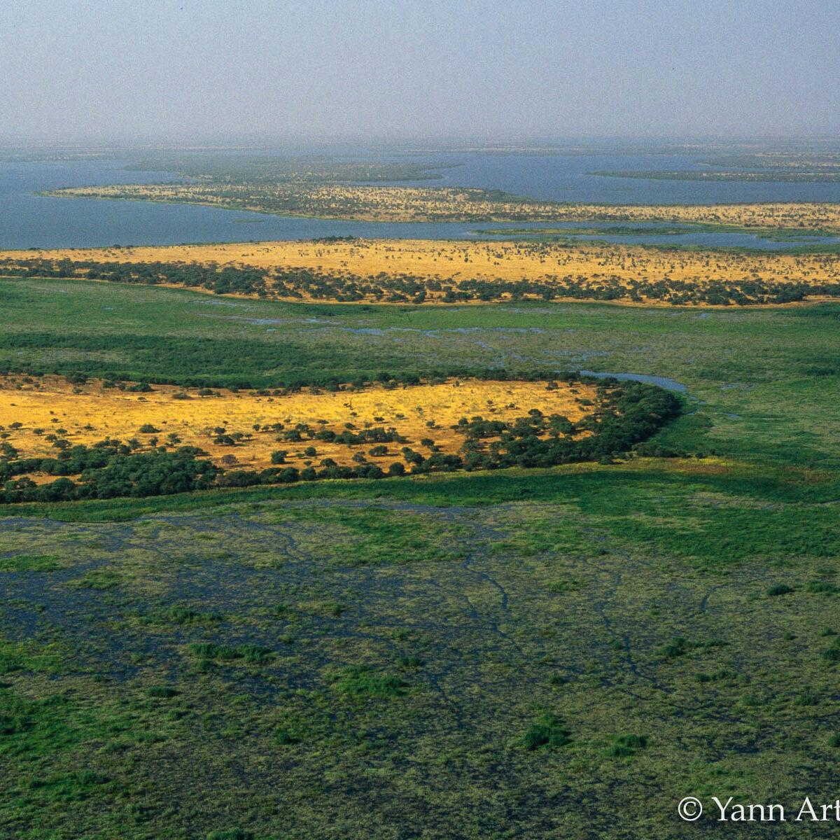 delta lac Tchad