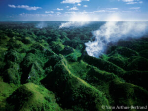 fronts de deforestation wwf