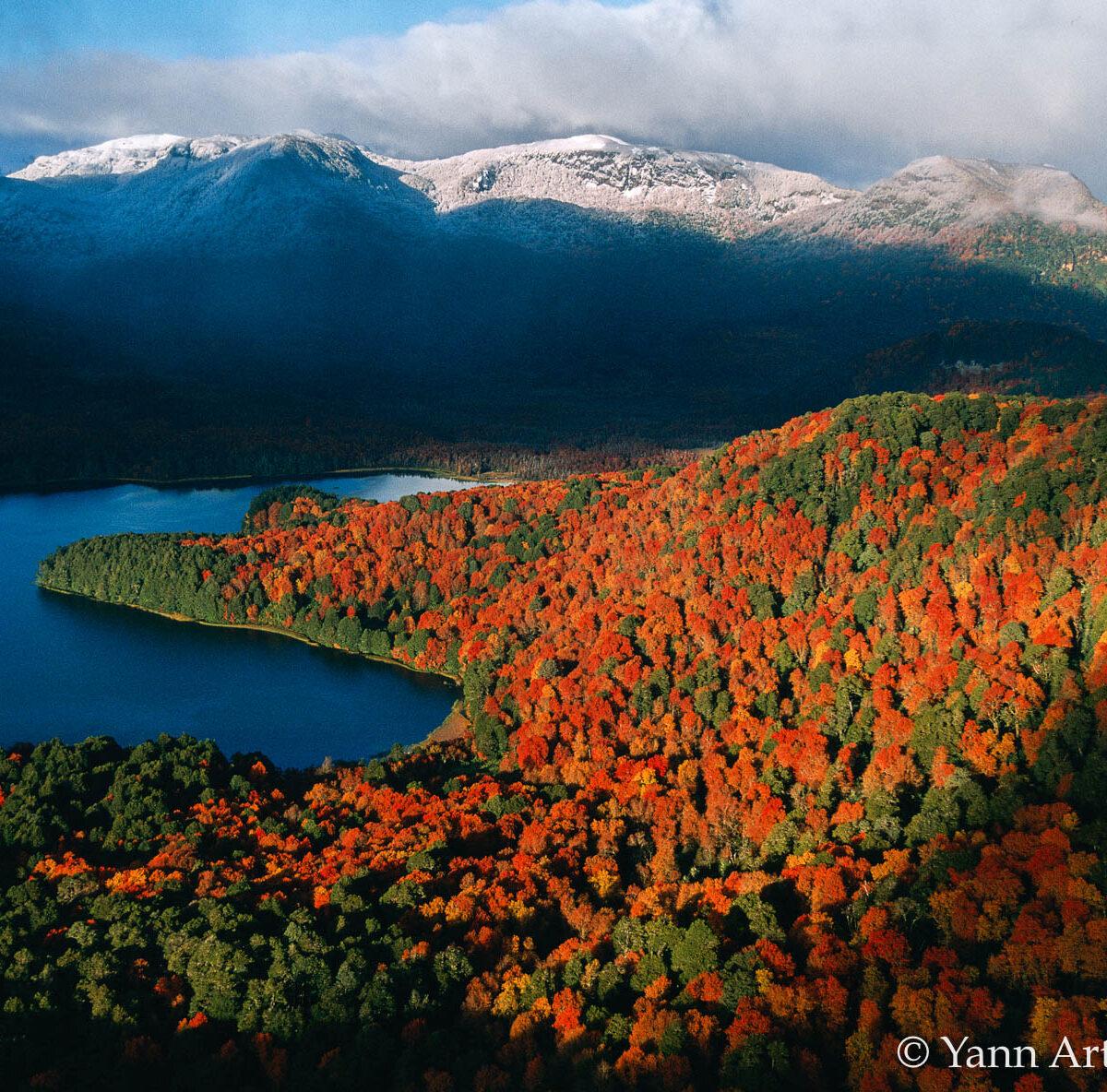 forêt lac Argentine automne