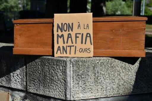 ours manifestation Ariège France Pyrénées