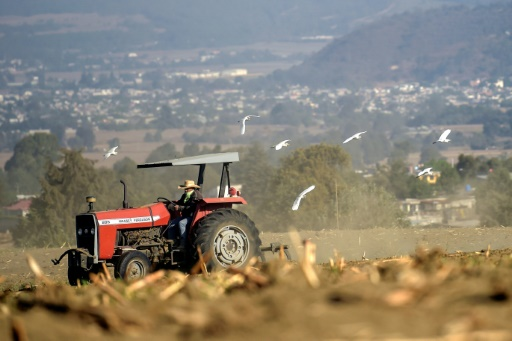 tracteur Mexique agriculture