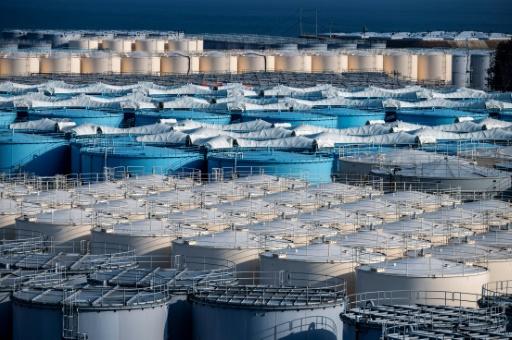 fukusgulma rejet eaux contaminées
