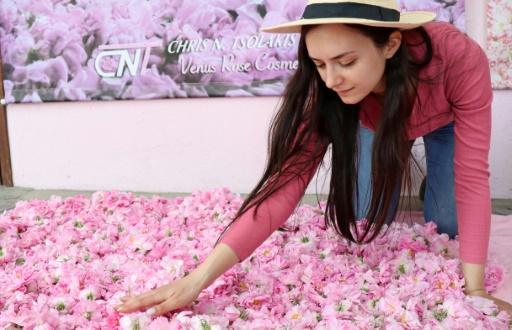 roses de Damas huiles essentielles
