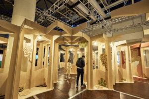 stage survie forêt Renaissances