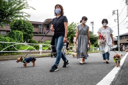 japon patrouille chiens enfant