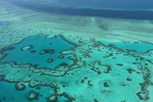 australie barrière de corail