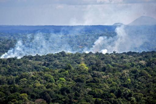 Brésil incendies
