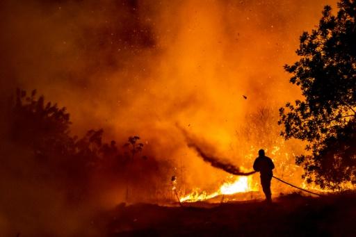 Chypre incendies pompiers chaleur