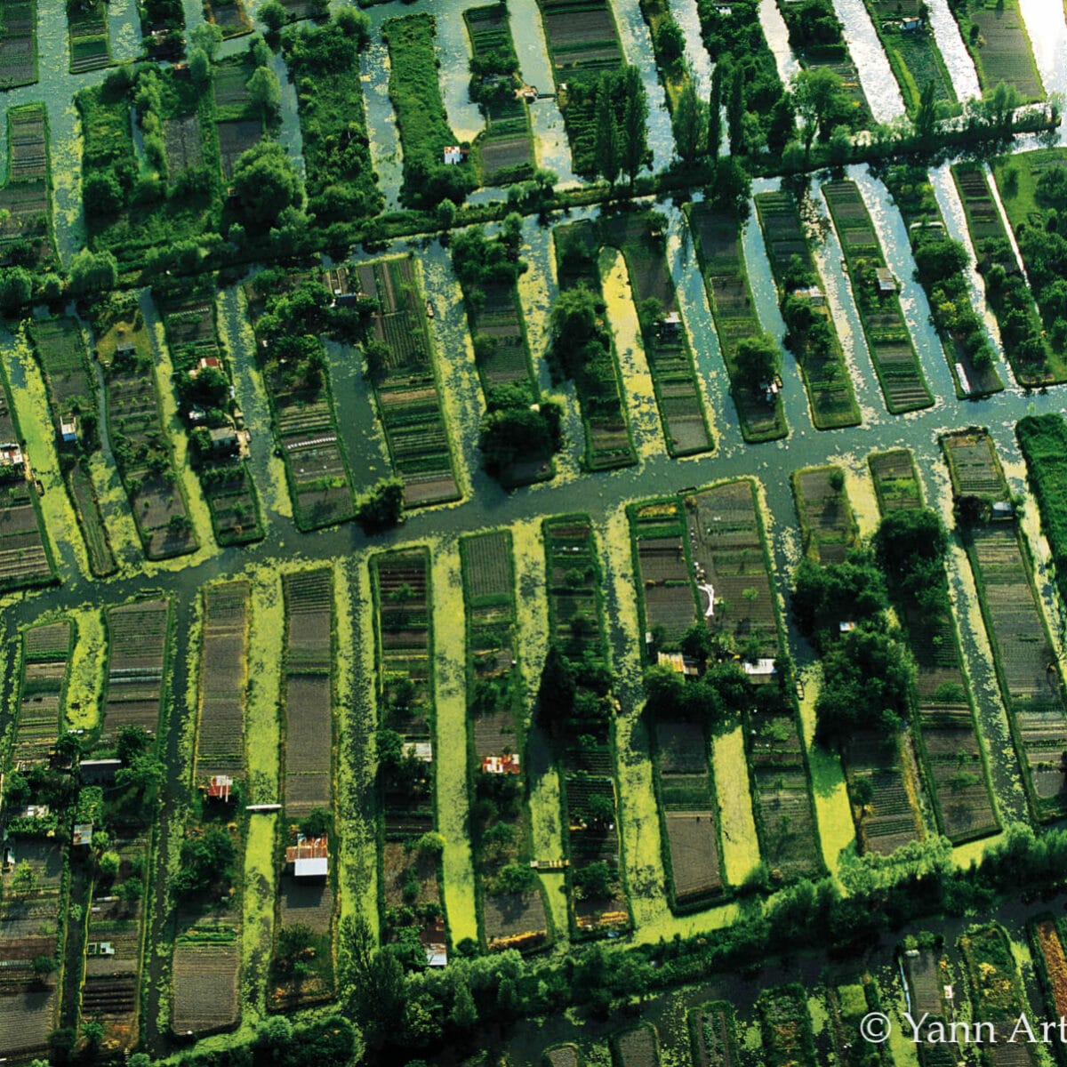 jardins potagers agriculture alimentation overshoot day