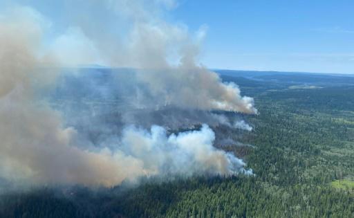 canada feux de forêts