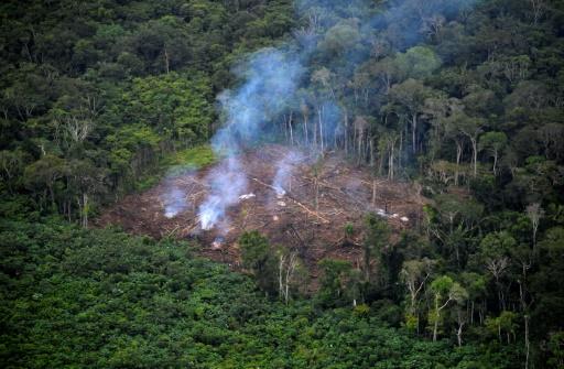 hausse déforestation colombie