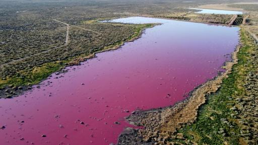 pollution des eaux rose fleuve patagonie