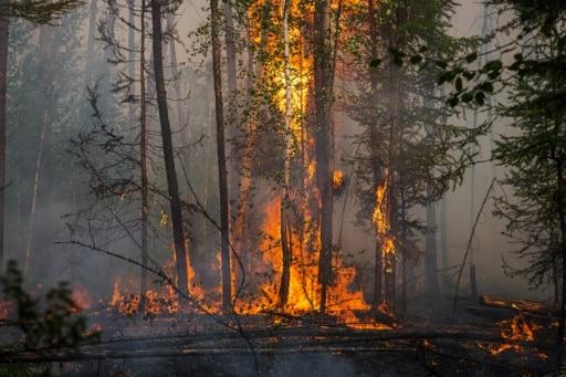 sibérie russie feux pompiers aides