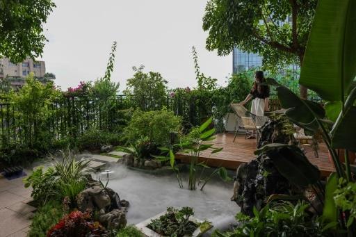 villes passent au vert immeuble végétalisé chine