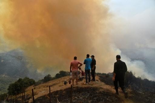 Algérie incendies