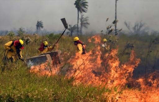 bolivie incendies