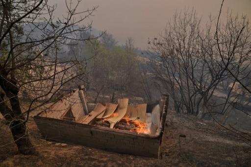 algérie incendies meurtriers
