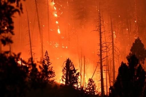 documentaire terrible preuve faux incendies californie états-unis