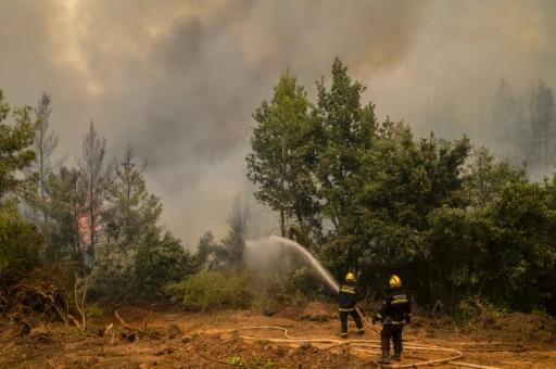 grèce incendies maitrisés