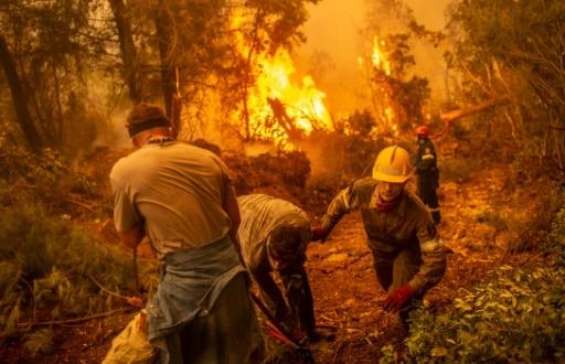 incendie eubée volontaires pompiers grèce