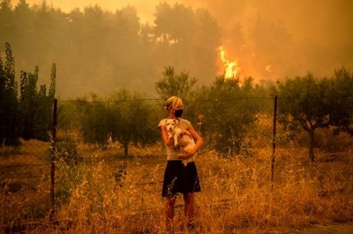incendies asimnio