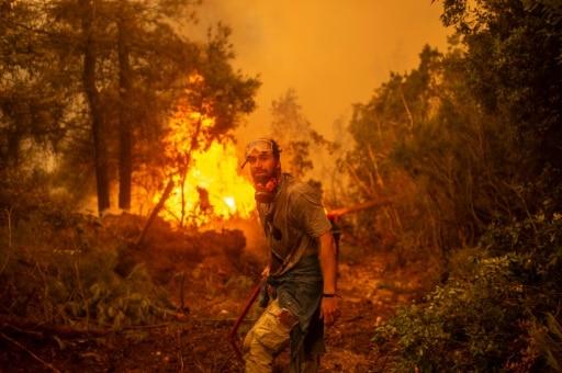 incendies turqui grèce ile eubée volontaires