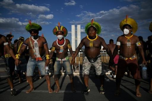 indigènes brésil