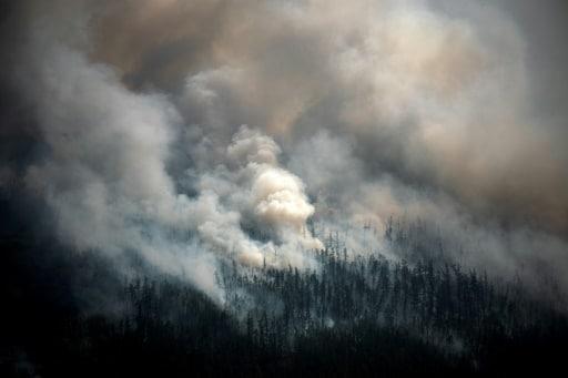 sibérie incendies changement climatique feux de forêts