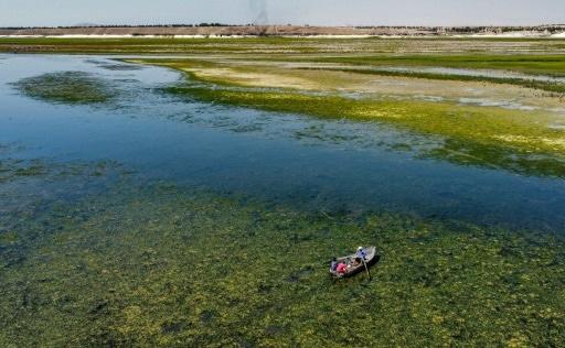 syrie sécheresse euphrate