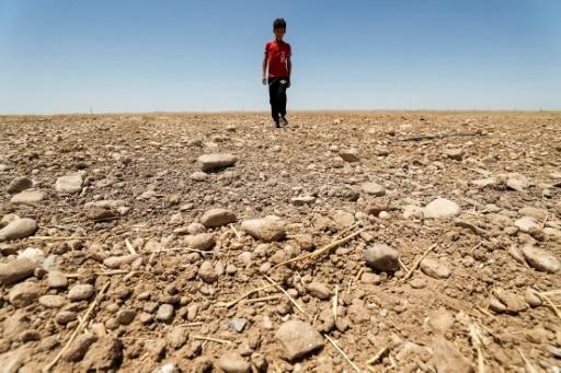 limite changement climatique à 1,5°C