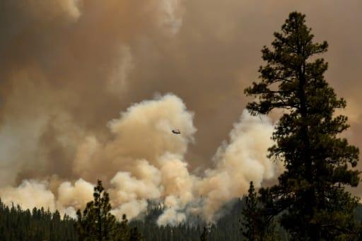 feux de l'été CO2