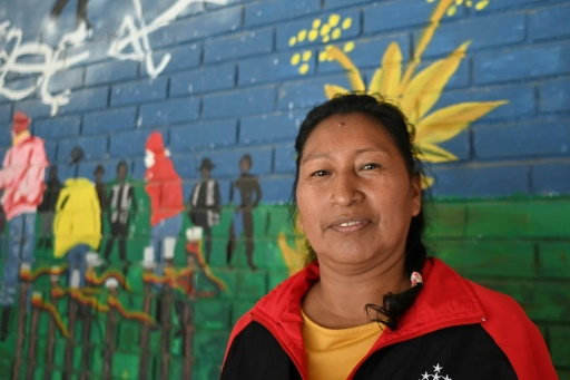 global witness colombie activistes indigènes